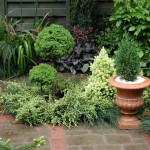 beautiful small garden design pictures