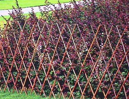 Cheap Garden Fence Design Ideas