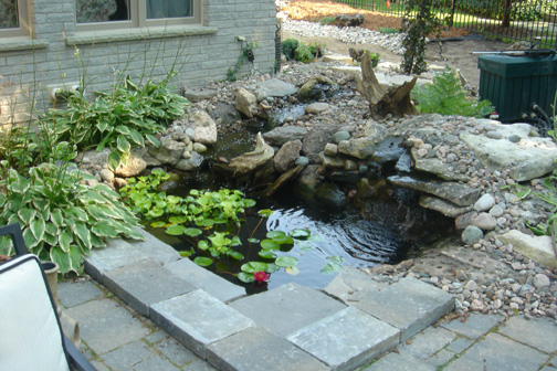 Classic koi fish pond design ideas home trendy for Koi fish pond decorations