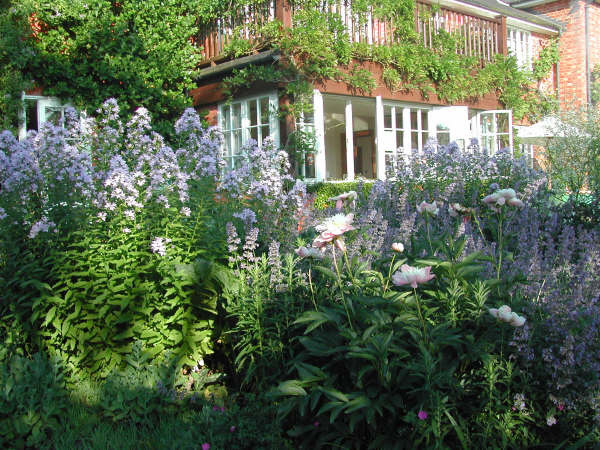 English cottage garden design ideas home trendy for Cottage garden design