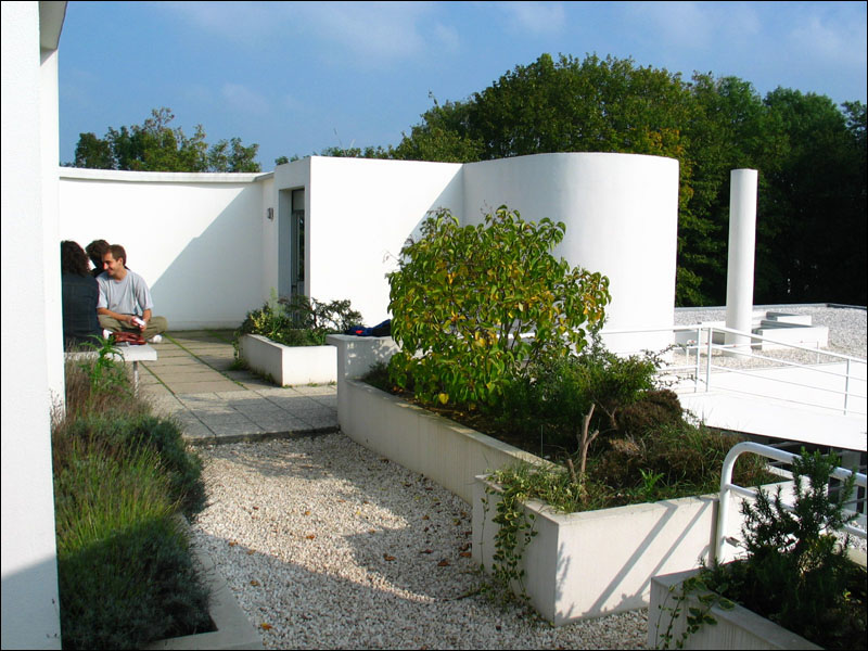 flat roof garden design ideas home trendy