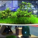 green indoor garden design ideas