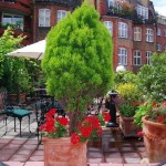 hotel diana roof garden design ideas