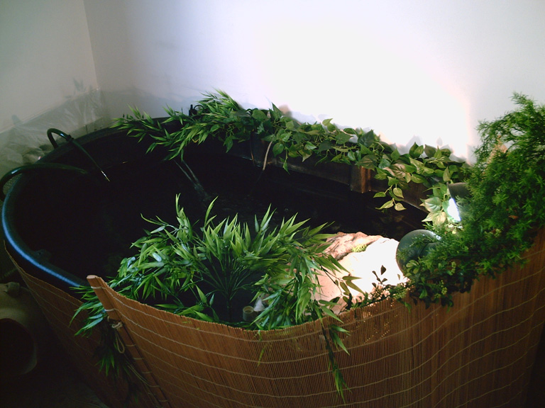 Mini indoor garden pond design ideas home trendy for Indoor fish pond ideas
