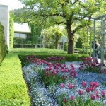 red flower garden design ideas