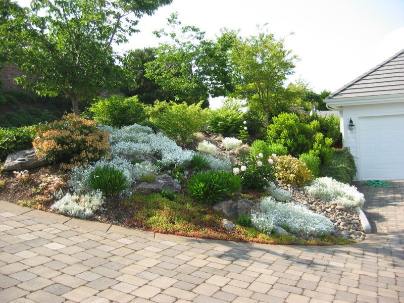 Remarkable Rock Gardens Landscaping Designs 800 x 600 · 320 kB · jpeg