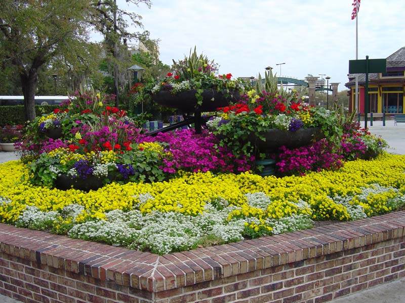Free flower garden ideas photograph browser you can d for Small flower garden layout