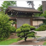 small japanese garden design ideas van nuys