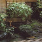 small japanese garden plants