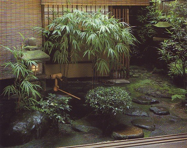 Small japanese garden plants home trendy for Japanese outdoor plants