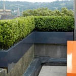 small roof garden design pictures