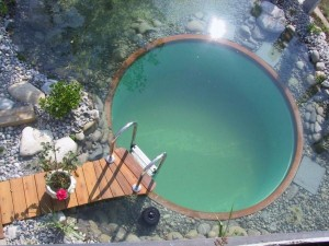 small swimming pool pictures