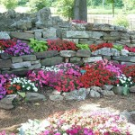 wall rock garden design ideas
