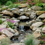 water rock garden design