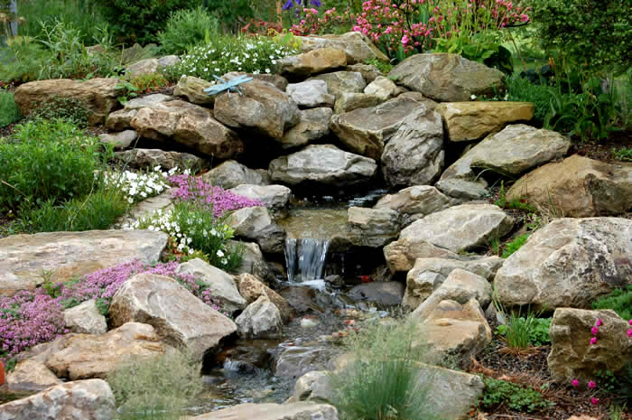 free rock garden ideas photograph on your browser you