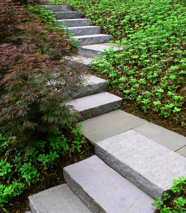 Picture shows stair step slope small terraces for Garden design on a slope