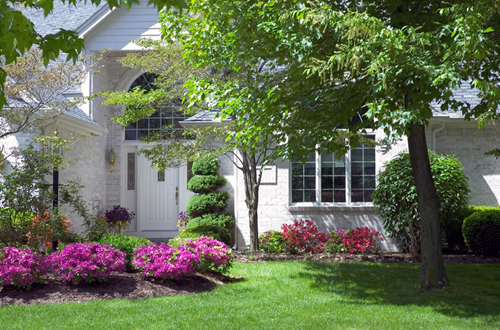 Rock front yard landscaping ideas memes for Basic landscaping ideas for front yard