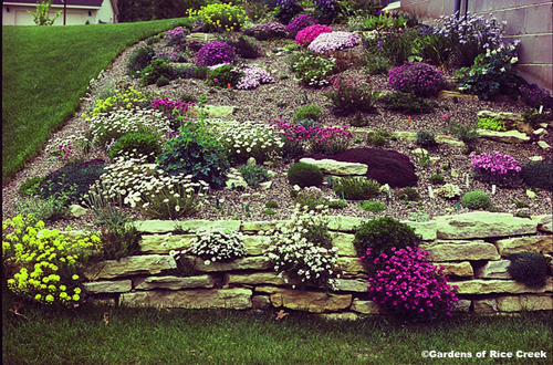 Slope garden design ideas home trendy for Sloping garden design ideas