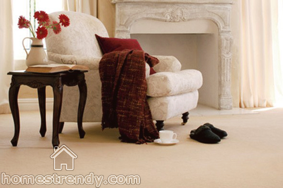 Carpet Cleaning Get Rid Of Stains And Odor Home Trendy