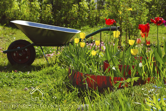 gardening-wheelbarrow