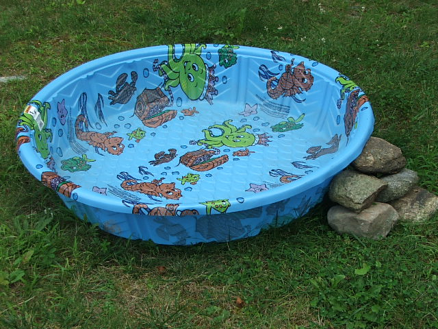 Hard Plastic Kiddie Pool Home Trendy