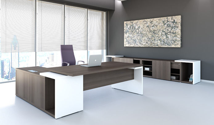 Executive Office Furniture and Design Ideas | Home Trendy