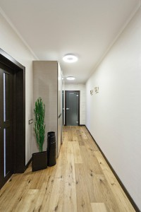 Apartment-designed-for-youngman-10